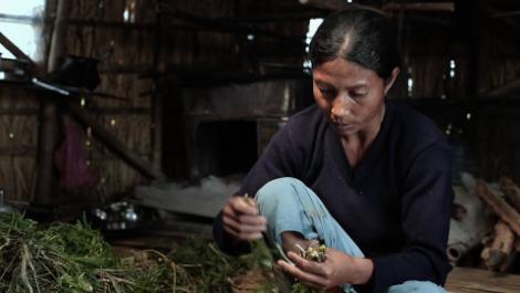 Loktak Lairembee Manipur