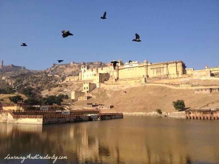 Birds flying over the Maota Lake