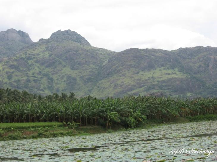 Nagercoil-Tamil Nadu