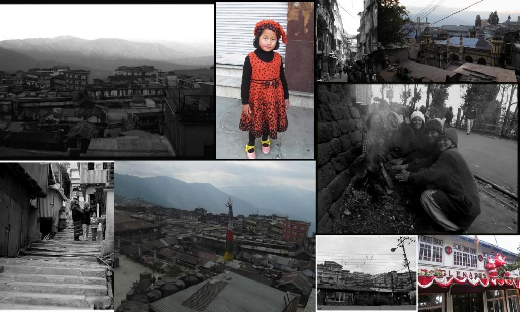 Little Paths of Darjeeling