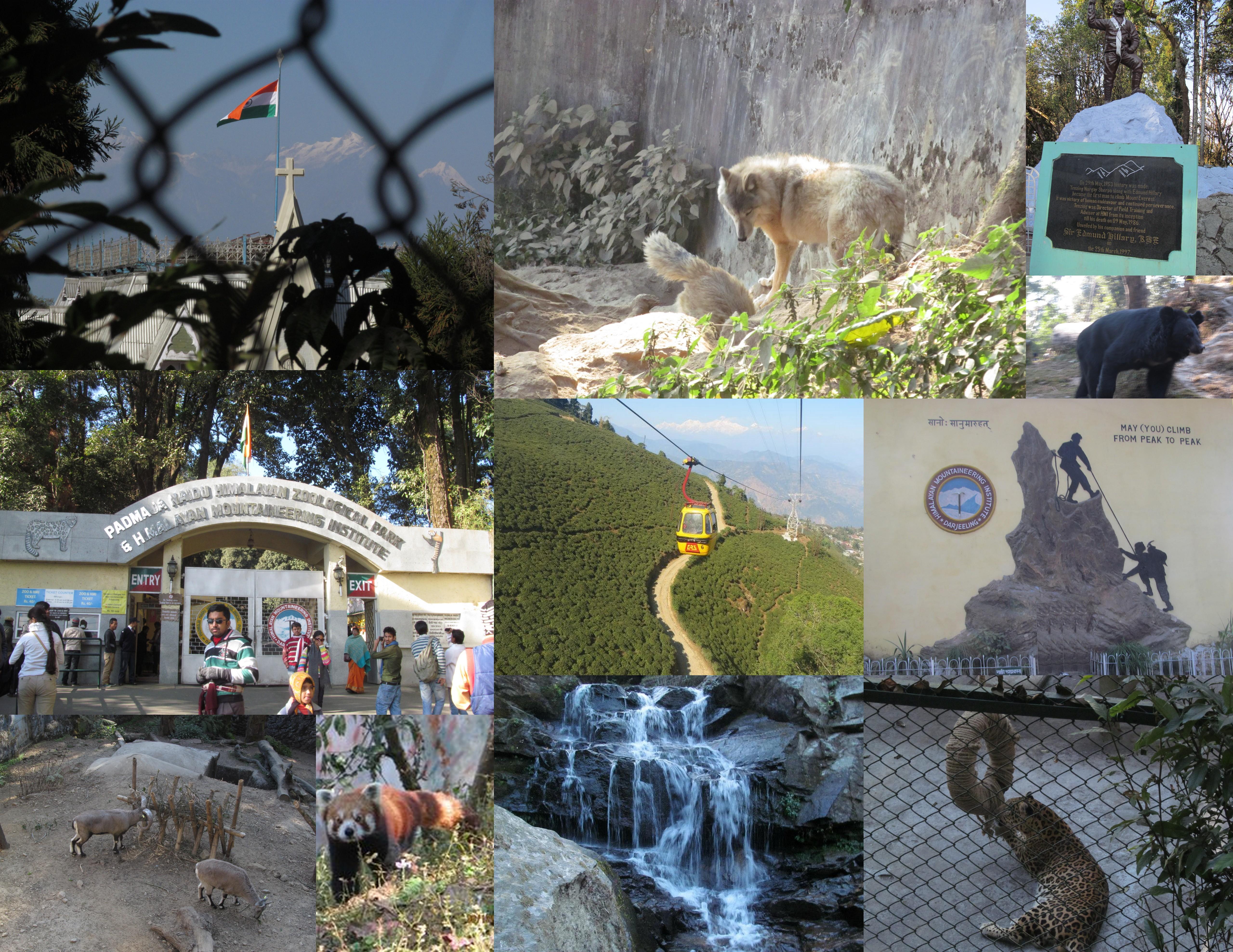 Trip to Darjeeling