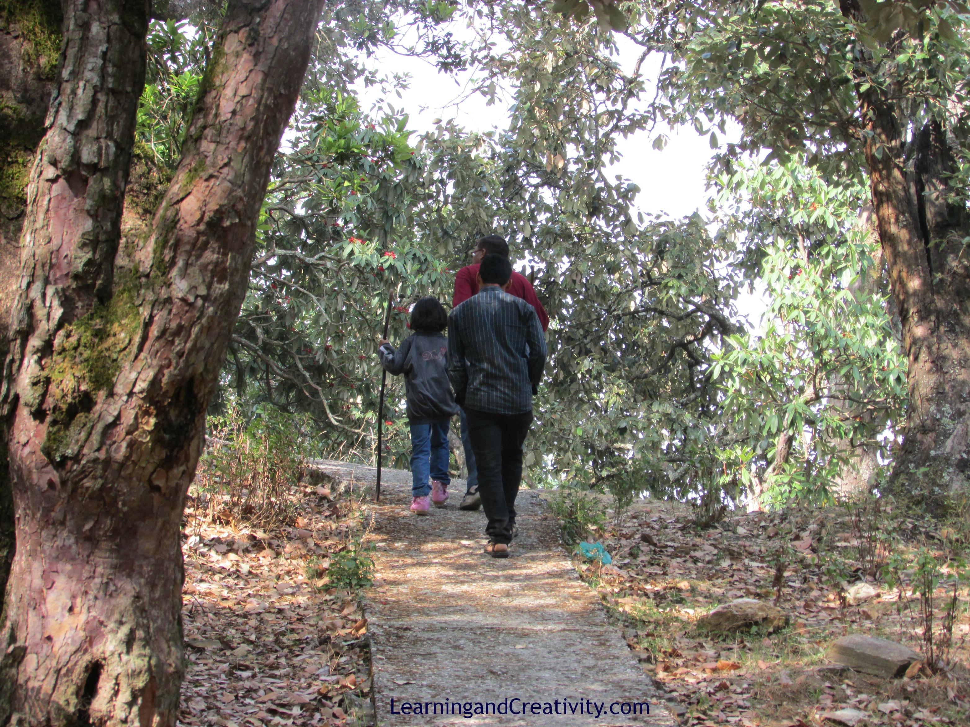 Trekking in Mayavati