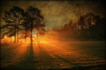 That marked the dawn of a new day; the dawn of insight that in meditation there is peace