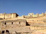 The Grandness that is Amer Fort