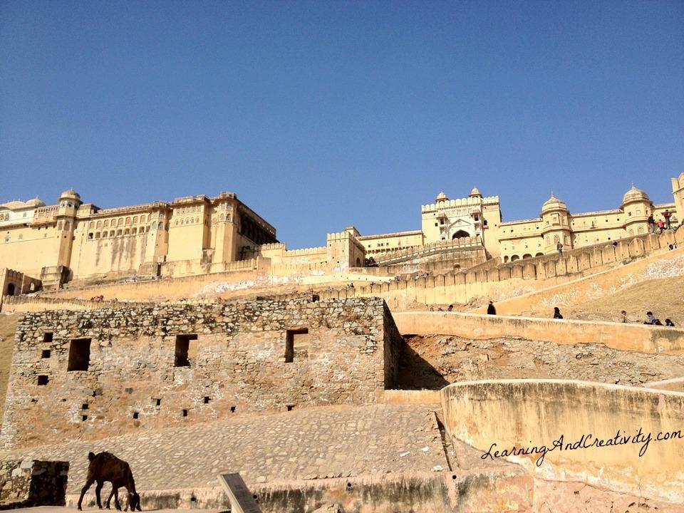 Rajput Maharajas