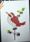 Charming Red and Whie Sparrow Quill