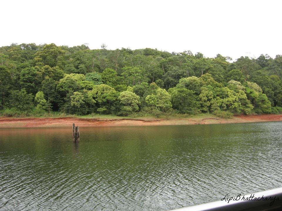 Periyar Lake, Thekkady, Kerala