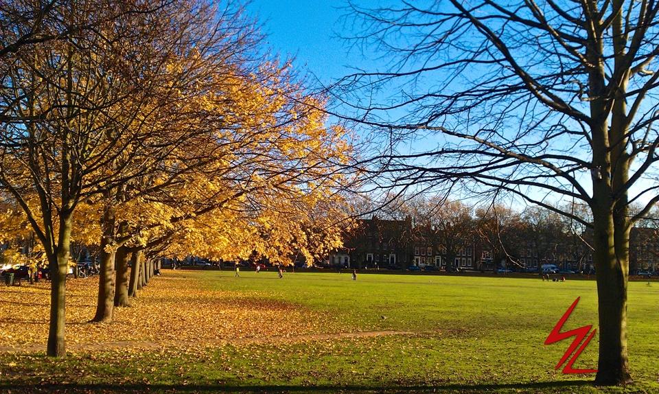 Richmond Green, Richmond,South West London