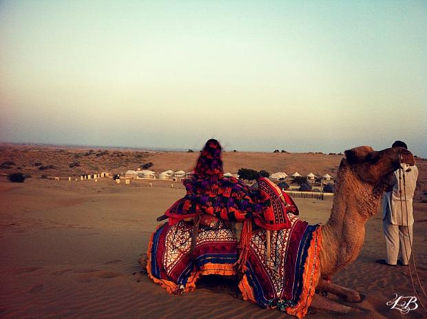 Camel Safari at Jaisalmer