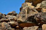 Puri - Bhubaneshwar - Chilka Lake