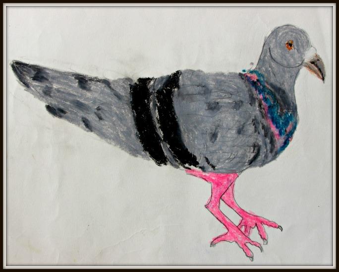 pigeon (art by kids)