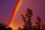 The lovely rainbow whose sight I lost Gave way to an eclipse