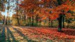 Seasons Of The World